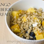Mango Blueberry Greek Yogurt Parfait